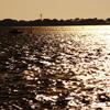 輝く浜名湖の湖面