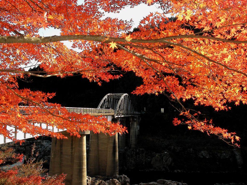 恵那峡の秋2