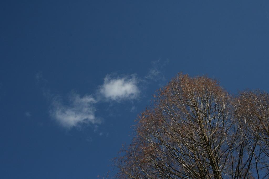 正月の空その3