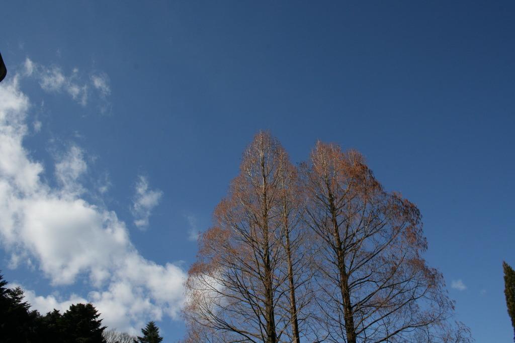 正月の空 その1