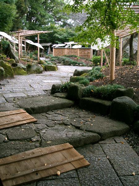 ぼたん庭園