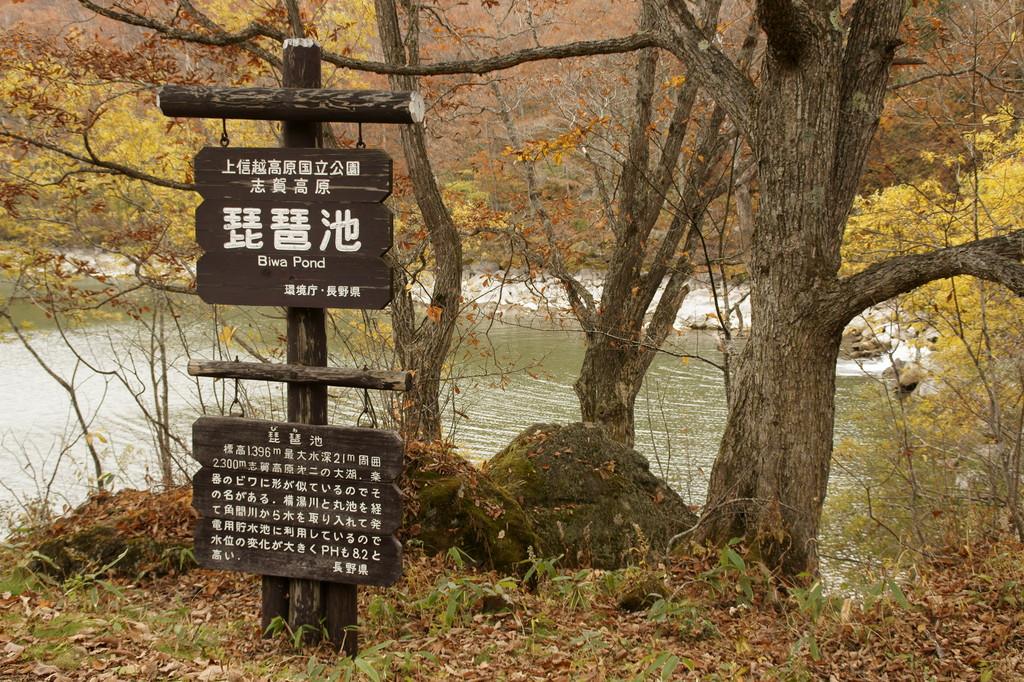 志賀高原 琵琶池