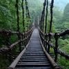 渡りたくなるつり橋
