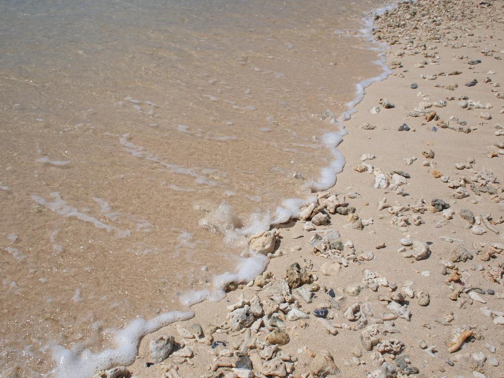 珊瑚の浜辺