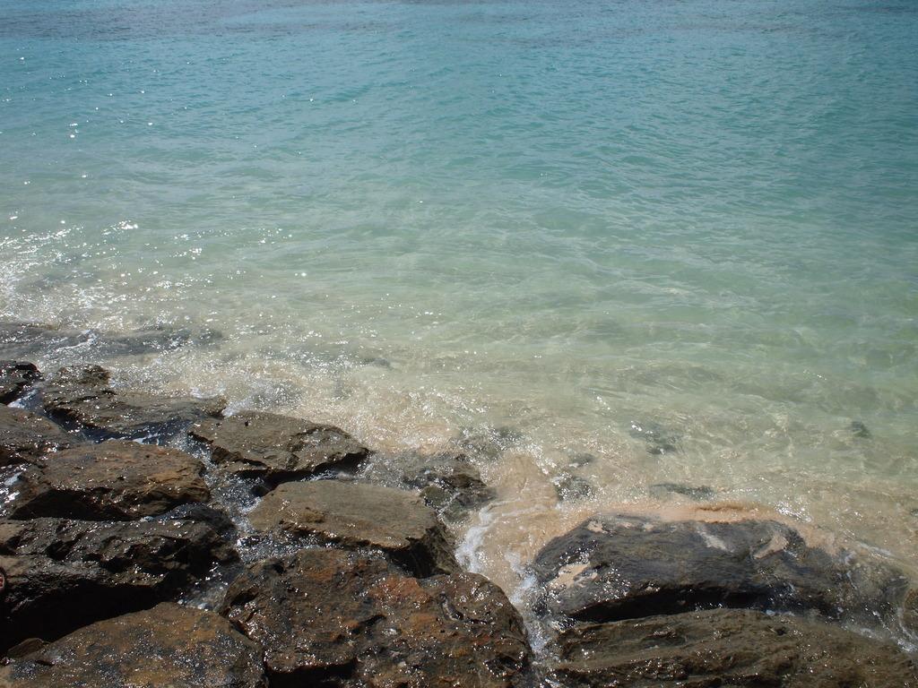 岩場に寄せる波