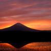 富士の夕焼け