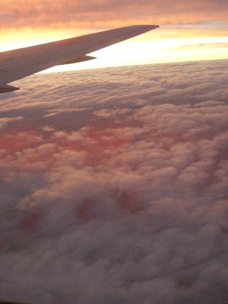 ANA289便から