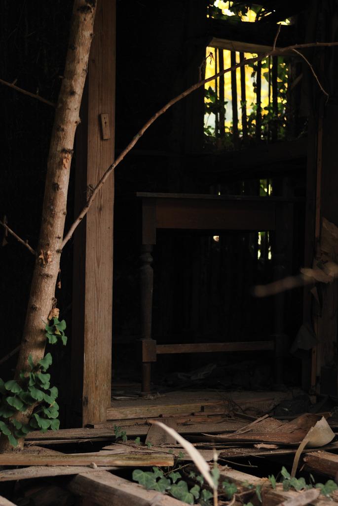 廃寺を訪ねて(9)