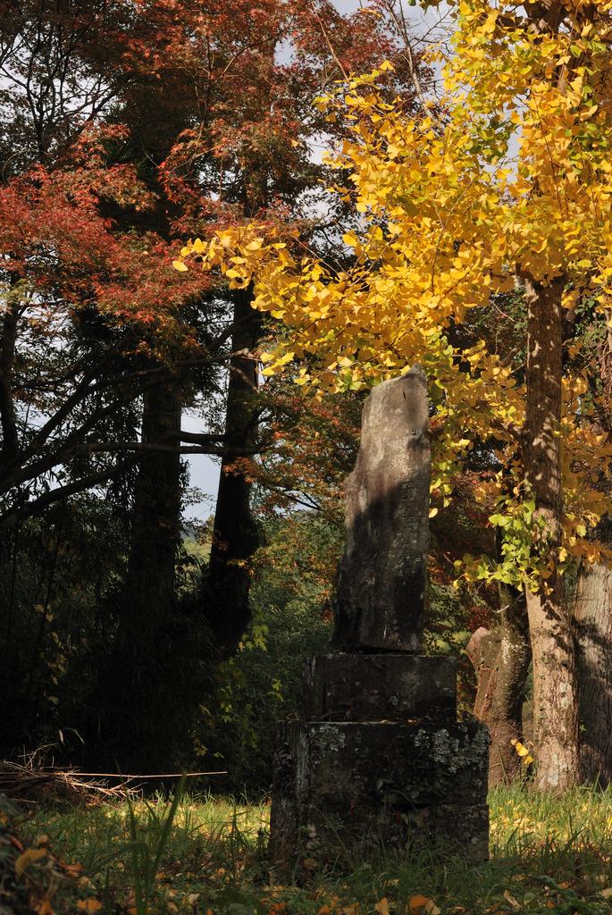 廃寺を訪ねて(10)