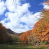 紅葉の蔦温泉