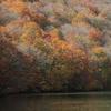 蔦温泉の紅葉3