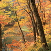 蔦温泉の紅葉9