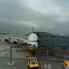 本日のA380 3