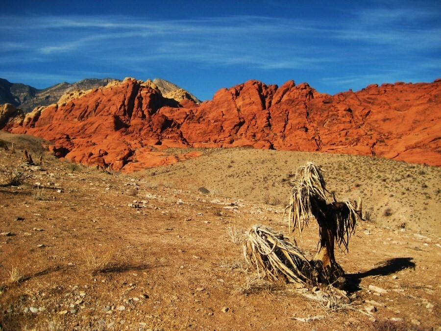 Red Rock13