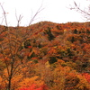 赤く燃える山-1