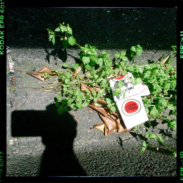 「幸運」にも見つけたタバコ