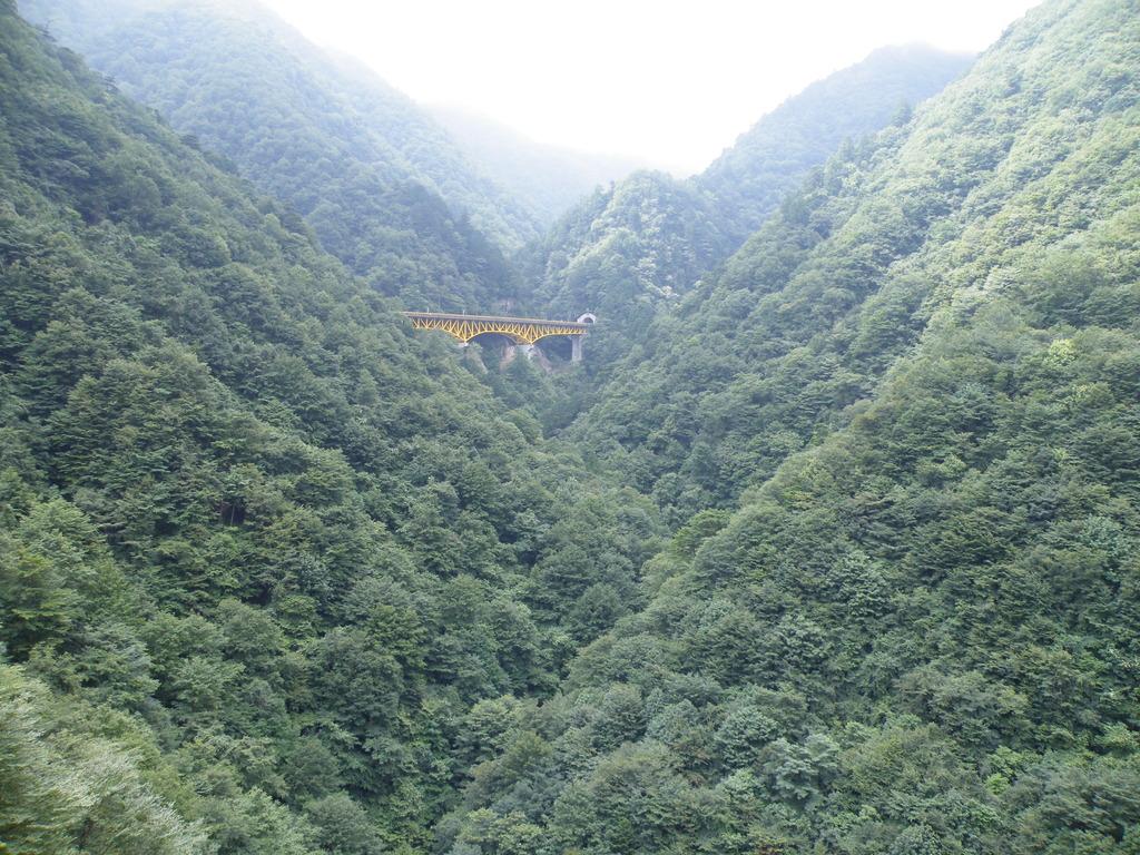 雁坂橋003