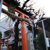 街の中の神社(櫻宮神社)