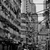 HongKongBlack #18