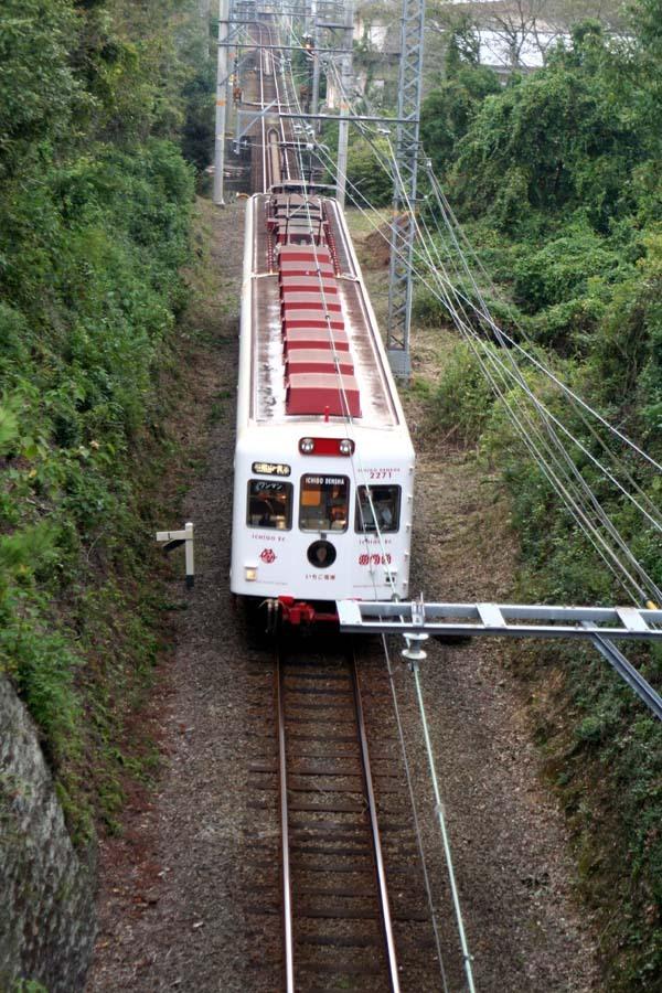 見下ろすいちご電車