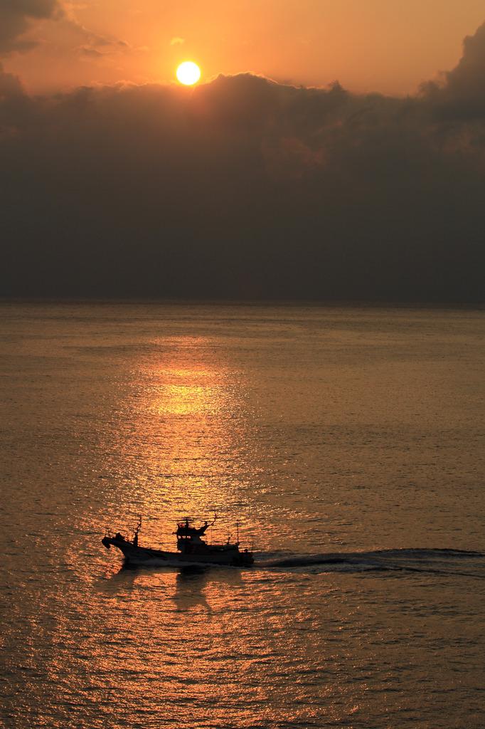 夕日を横切る