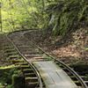 新緑の森林軌道
