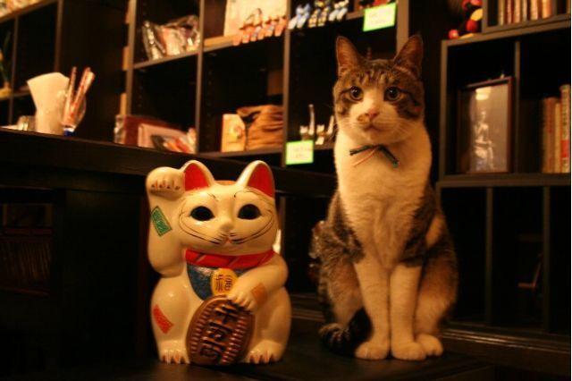 招き猫と・・・