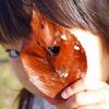落ち葉のハートの隙間から、鋭い眼光。
