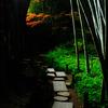 竹の寺(3)
