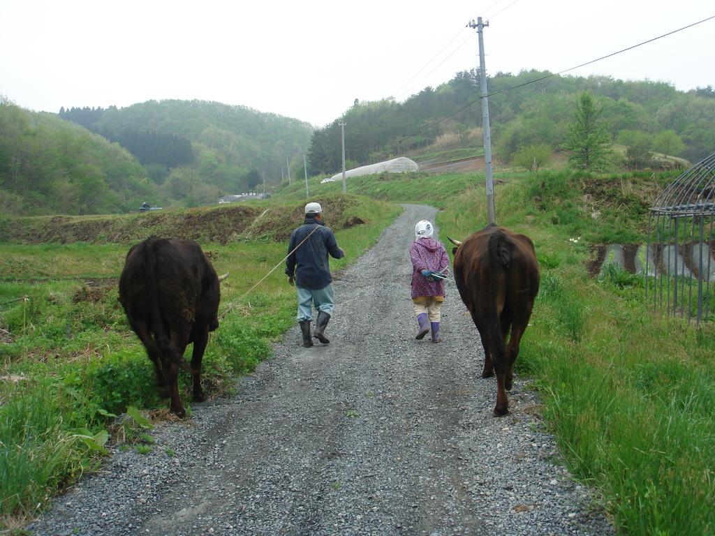 放牧地に牛を連れて行く父と母と私