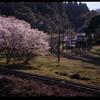 桜Station