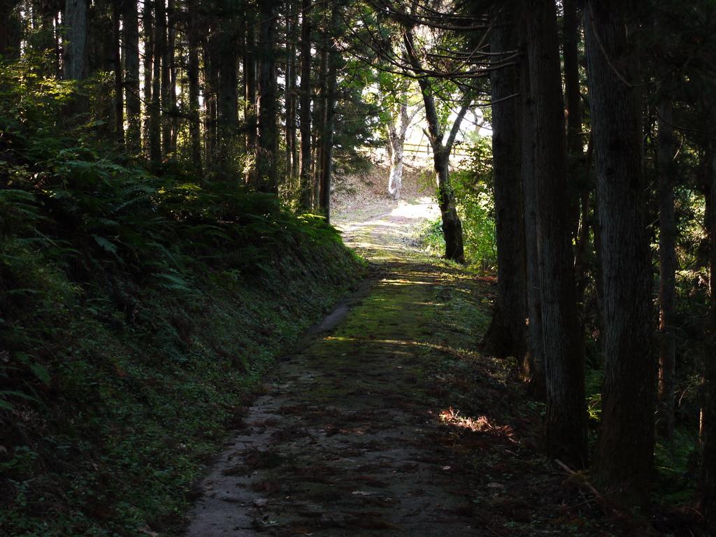 公園に通じる道2