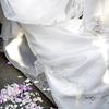 花嫁と紙吹雪