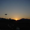 陽はどんな時もやってくる(DSC00654)