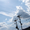 電線(DSC04922)