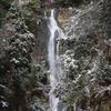 12月19日 吹雪の蒜山へ 046