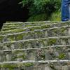 石畳階段+コケ