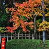 紅葉とレトロなポスト