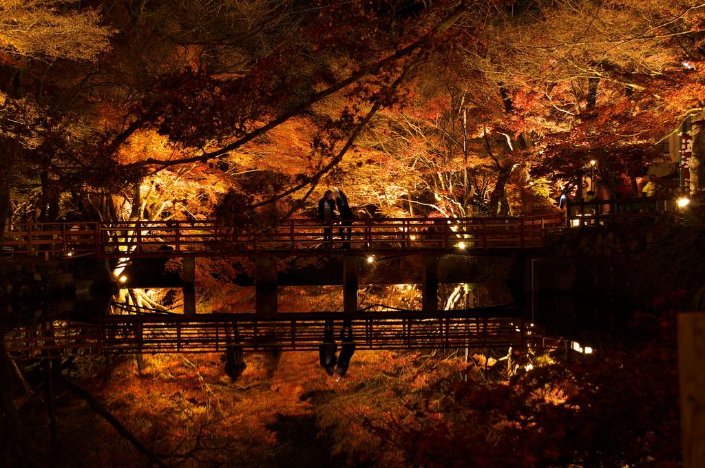 燃ゆる秋の夜