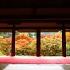 『高雄の秋』
