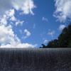 夏の札内川