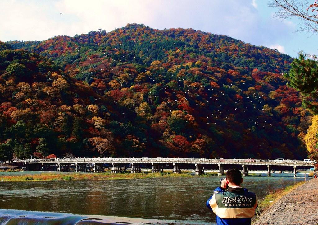 嵐山-Shutter Chance