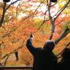 老夫婦の秋