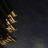 興福寺光と影