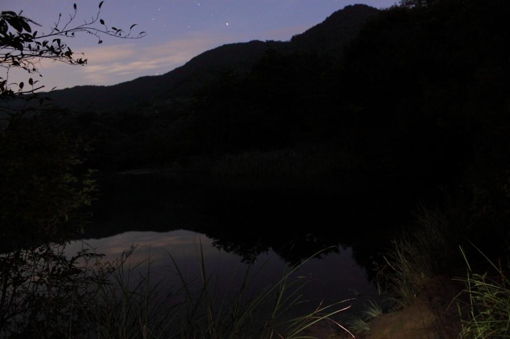 池に瞬く星