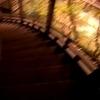 京都・永観堂の階段
