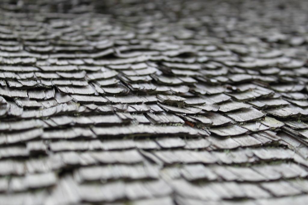 屋根の模様