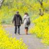2人で歩く春の道