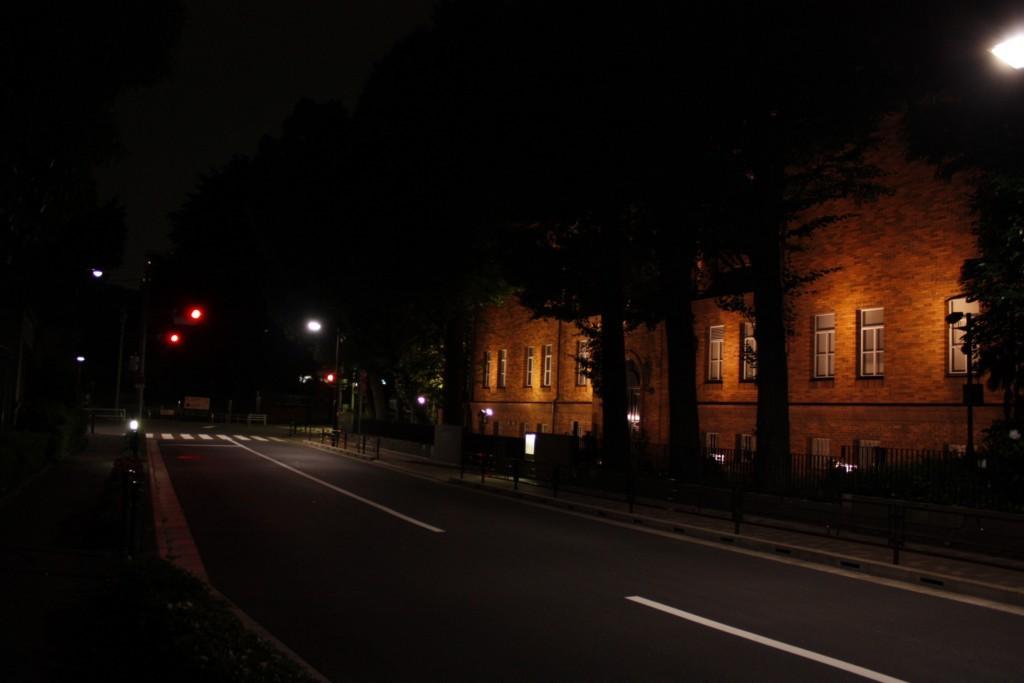 国際こども図書館の夜道