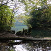 鶏頭場の池